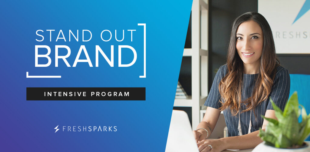 Stand Out Brand Program - Intensive Group Brand Coaching