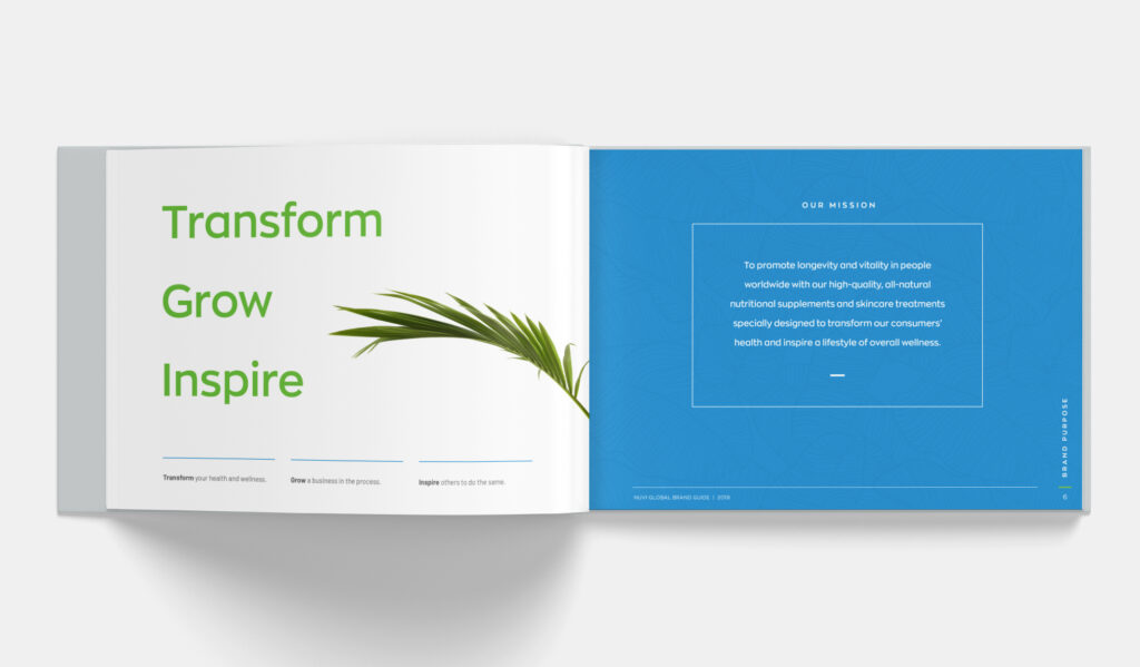 Brand Guide Book - Nuvi Global